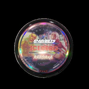 ICEBERG-ARASKA-e1612290705519